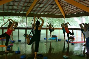 DancerstrapGG 200 Hour Yoga Teacher Training: December 3, 2016 - December 17, 2016