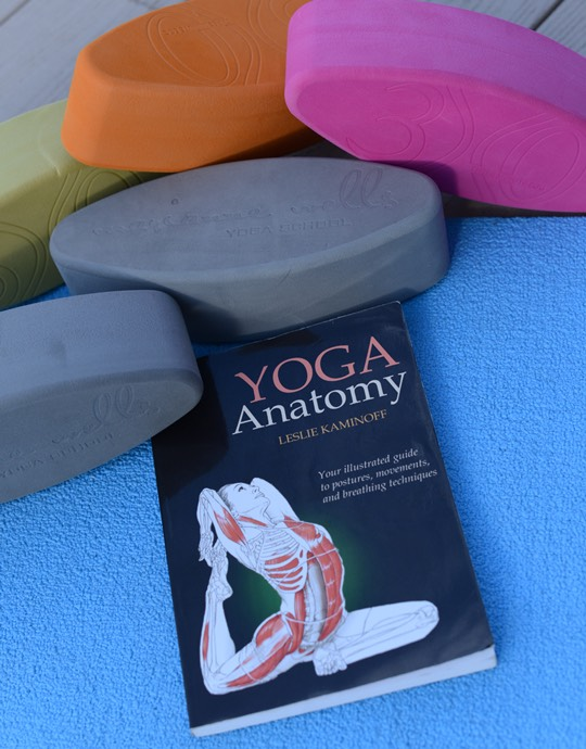 Yoga Anatomy- Kaminoff